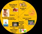 roue des choix colère émotions enfants outil astuce parentalité bienveillante
